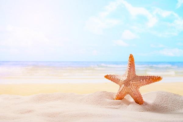 רצועת החוף באזור משתרעת לאורך 7 קילומטרים - מלונות בהרצליה